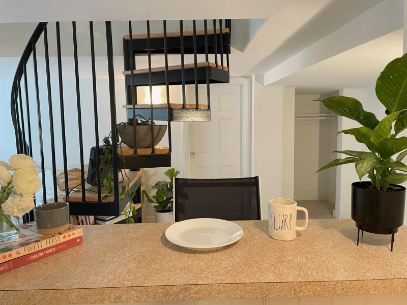 15 mins to NIH – Spacious, quiet true 1BR / 1 BA English Basement with office nook & private outdoor space near downtown Takoma Park | $1,095 Utilities + Internet Included