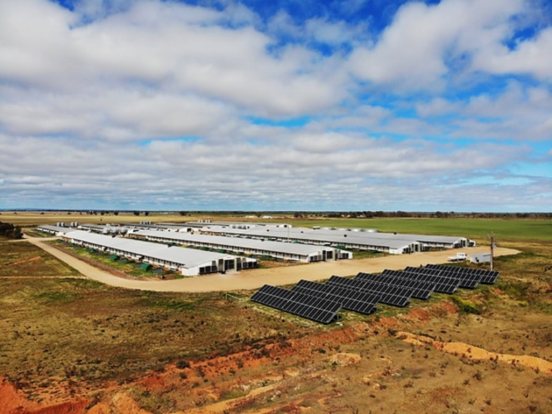 Sams Solar Power Installation Projects - JMJ Ruby Management Port Wakefield 1