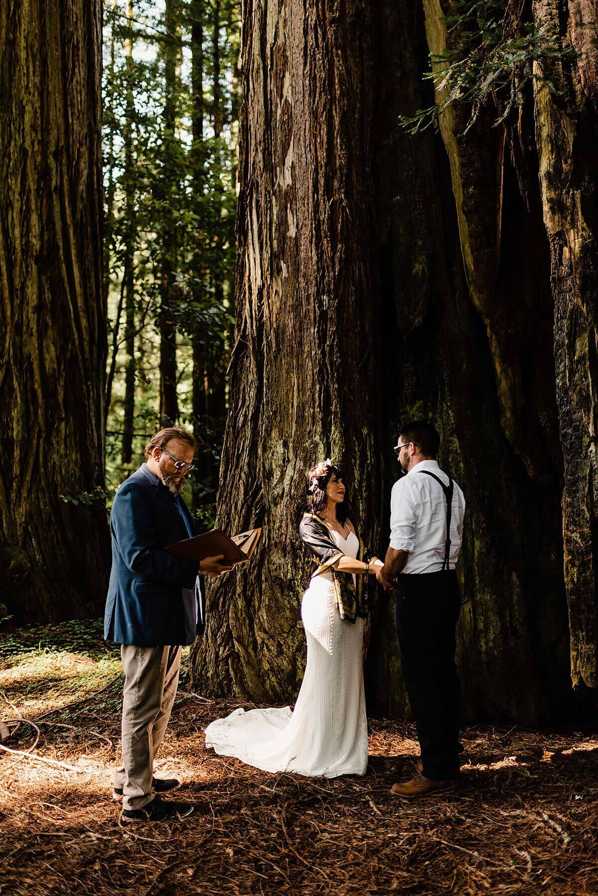Allison-Brooks-Jedediah-Smiith-Redwoods-Adventure-Elopement-Wedding-S-Photography-Blog_0022.jpg