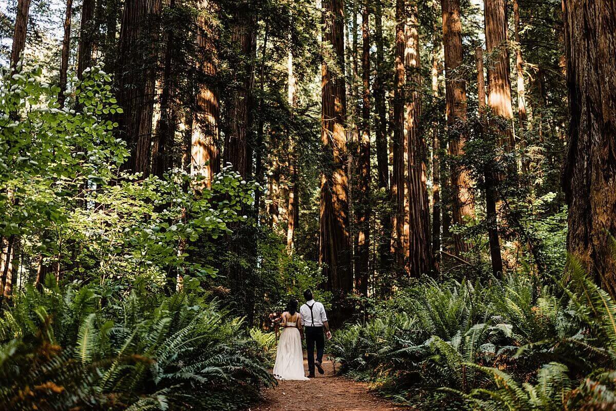 Allison-Brooks-Jedediah-Smiith-Redwoods-Adventure-Elopement-Wedding-S-Photography-Blog_0030.jpg
