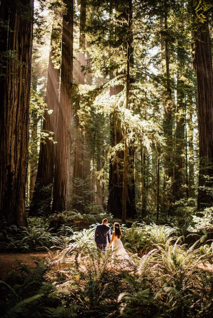 Will my friends and family be upset if I elope - adventure elopement photographer - redwoods elopement