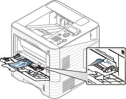Media and tray