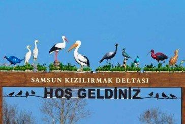 Kuş Cenneti Trafiğe Kapatıldı