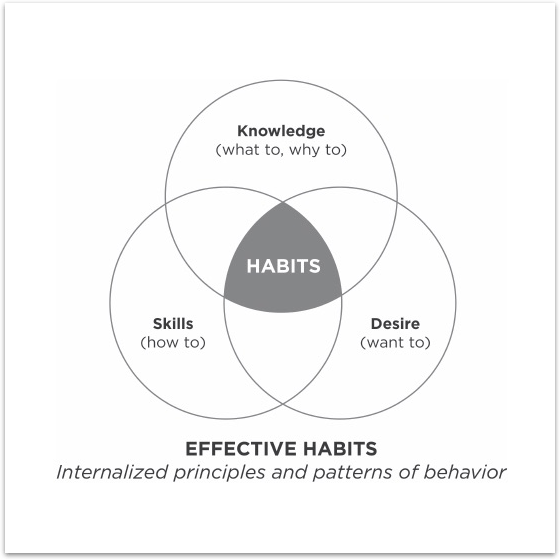 Habits Of Highly Effective People Ebook : Free Programs