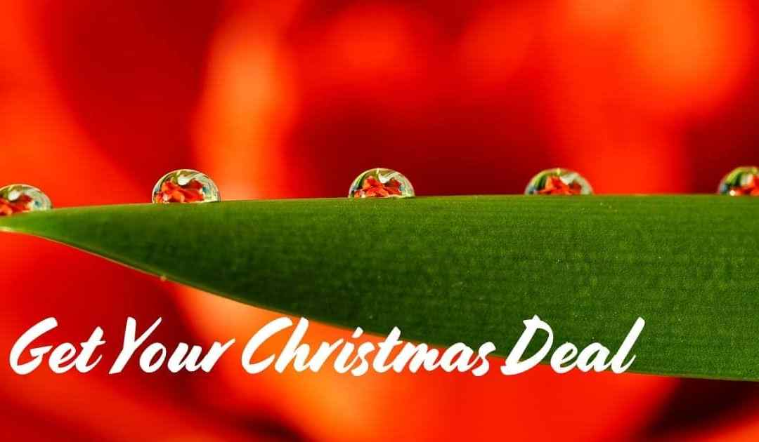 Get Your Christmas Deal Today!