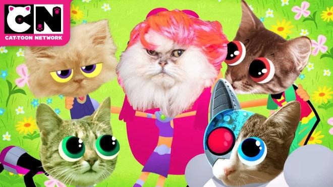 International Happy Cat MEOW Day