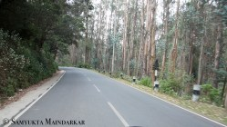 Or rent a two-wheeler and drive through eucalyptus forests, the best way to take in the hills