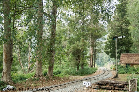 The Nilgiri Mountain Railway was built by the British in the early 1900s, and Lovedale station retains its historical character, bringing to mind stories of travelling on steam engine trains that slowly chug through dense forests teeming with wild animals