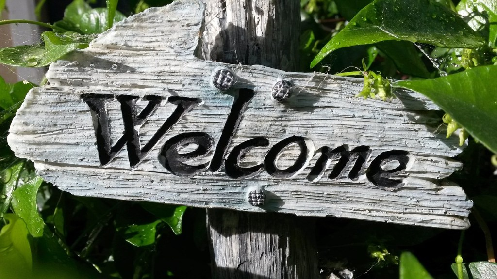 Bienvenue blog de conseil en naturopathie