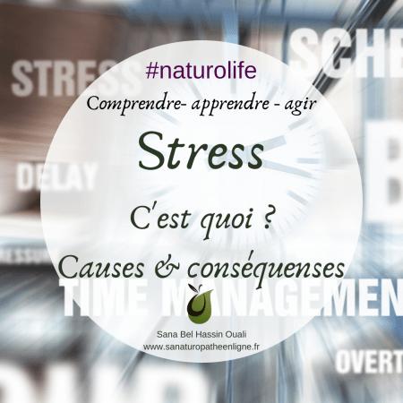 comprendre le stress c'est quoi le stress