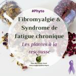 Fibromyalgie et syndrome de fatigue chronique : les plantes à la rescousse