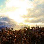 Fyrish hill