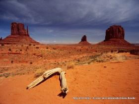 Fotogaléria - Amerika - národné parky juhozápadu USA