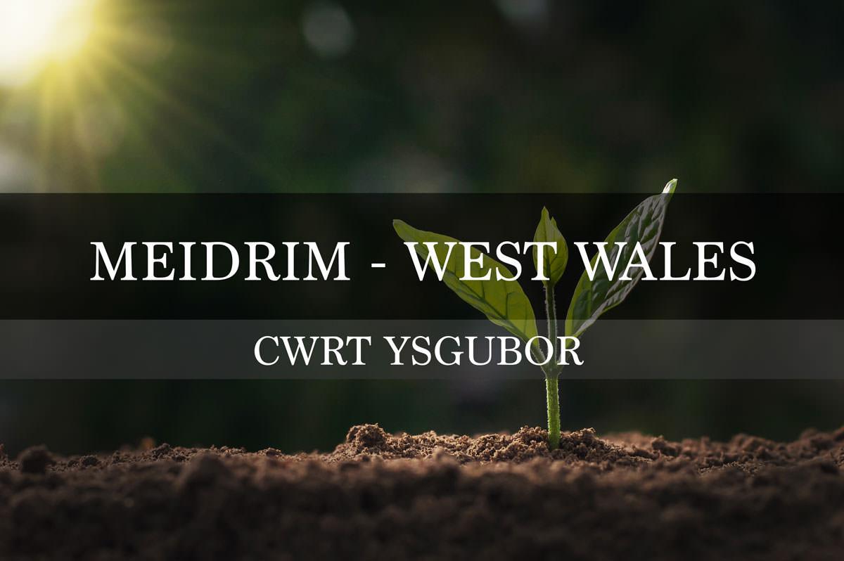 Cwrt Ysgubor Development - Meidrim