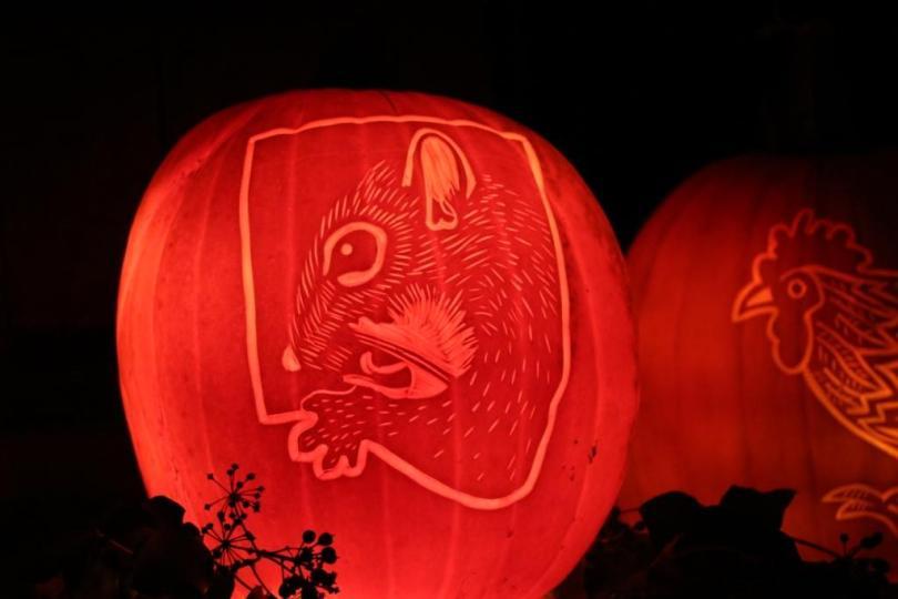 Squirrel-Rudolfingen Pumpkin festival