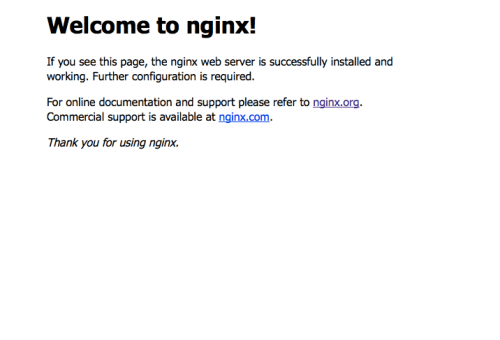 Nginxで接続できた!