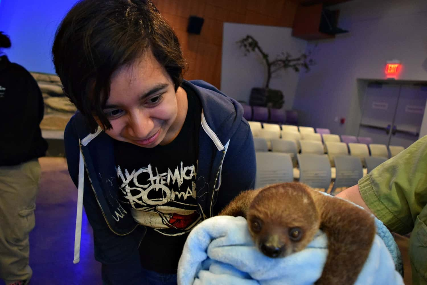 How A Baby Sloth Captured My Heart At National Aviary