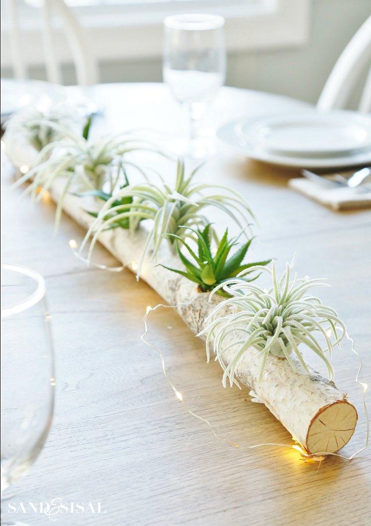 Easy Office Plants