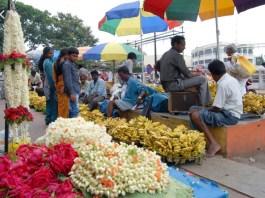 urban livelihoods