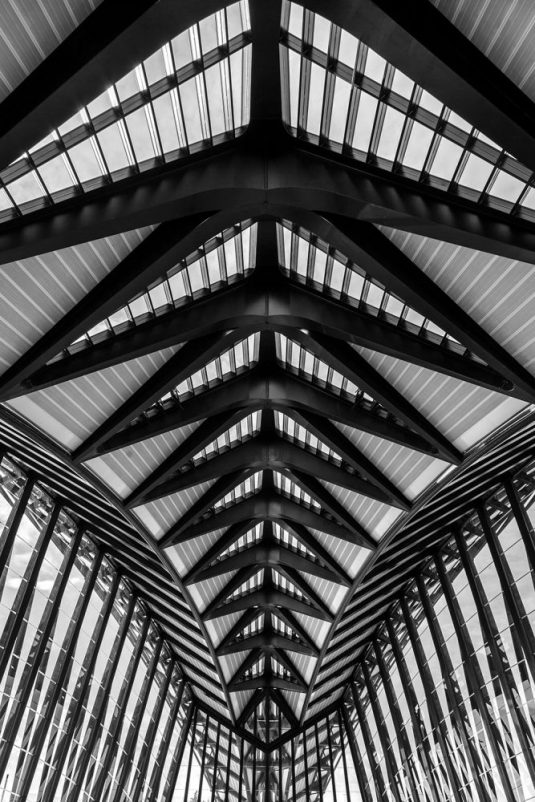 Roof of entrance hall at Lyon Saint Exupery airport train terminal.