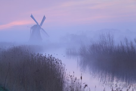 Foggy, pink sunrise in Holland with a traditional windmill in the wetlands.