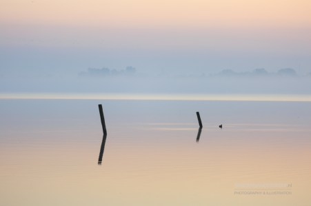 Two poles in a lake during a tranquil sunrise.