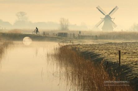 Foggy spring sunrise in the Dutch countryside.