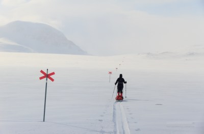 Skier on a marked trail in the snow, Lapland.
