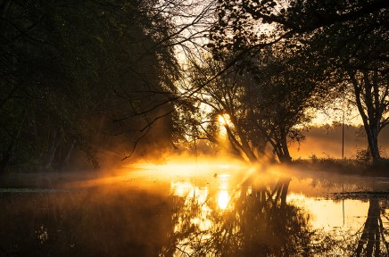 Tranquil and foggy, autumn sunrise reflected in a small river.