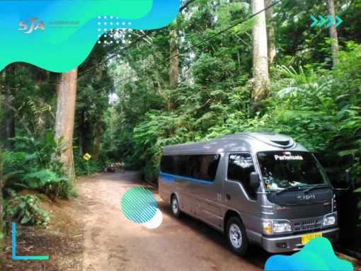 Sewa Bus Pariwisata Murah - Sandholiday (27)