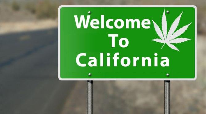 Image result for california marijuana