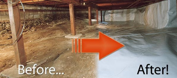 Crawl space mold removal water damage restoration service crawl space mold removal solutioingenieria Choice Image