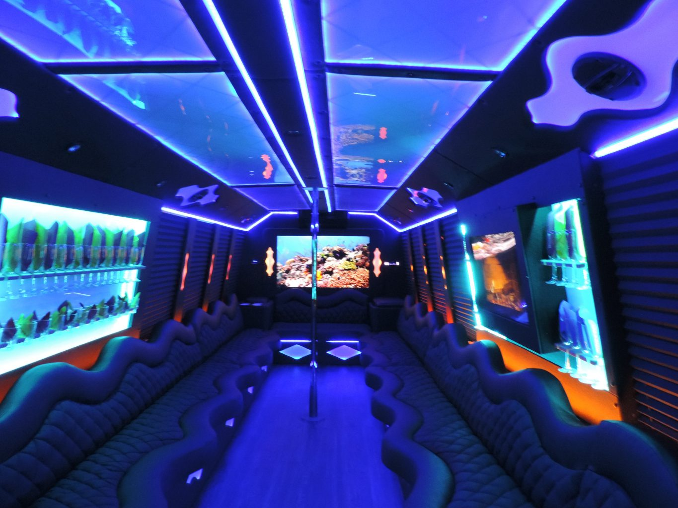 Las Vegas Bus Transportation Rental Party bus ServicesSan