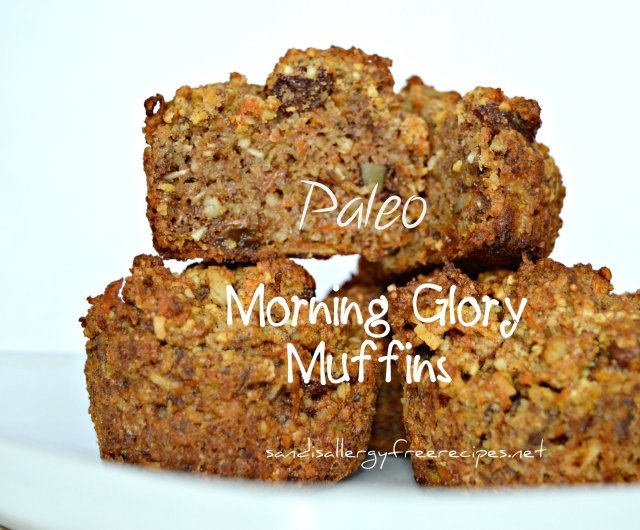 Paleo-Morning-Glory Muffins