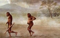 صورة للأنسان القديم والذي يعتقد أنه سلف البشر الحاليين