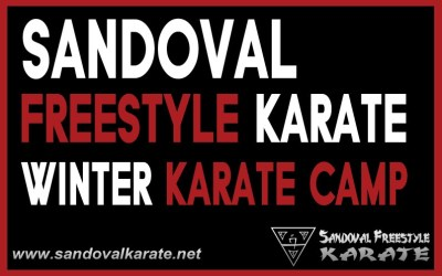Winter Karate Camp