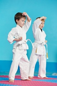 Brothers Practicing Karate