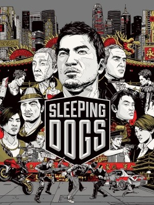 Sleeping Dogs Video Game