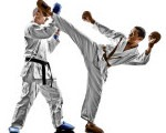 Adult Martial Artists Sparring