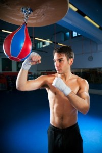 Speed Punching Bag