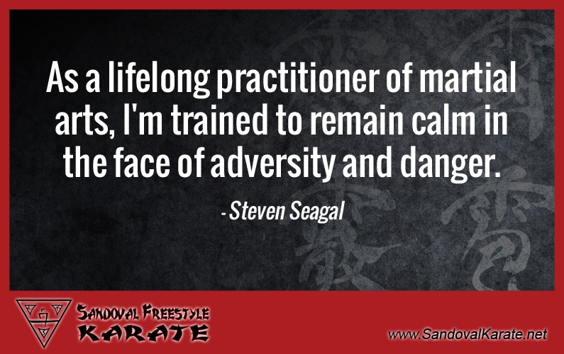 Steven Seagal Martial Arts Quote
