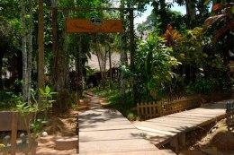 sandoval lake amazon travel tambopata
