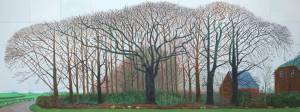 bigger trees near water by david hockney 5-5-14