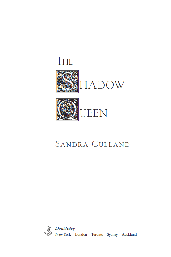 I've fallen in love with THE SHADOW QUEEN book cover