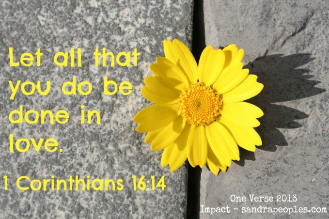 one verse for 2013