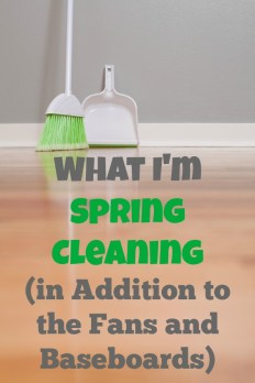 What I'm Spring Cleaning (in Addition to the Fans and Baseboards) - sandrawpeoples.com