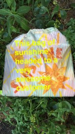 bag of sunshine 1
