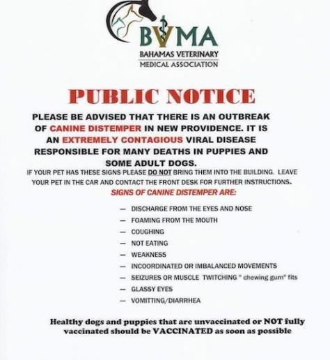 BVMA Distemper Advisory