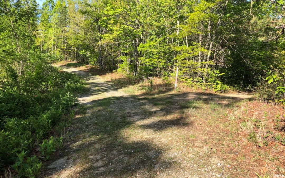 Long Ridge – Turkey Gut – Stair Step Falls