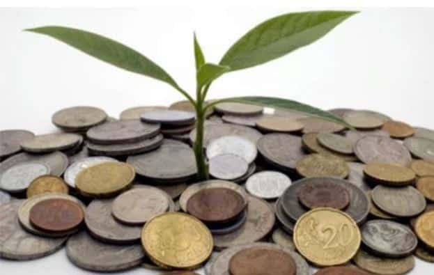 Sustentabilidade econômica e ambiental: por que elas devem seguir juntas? 1